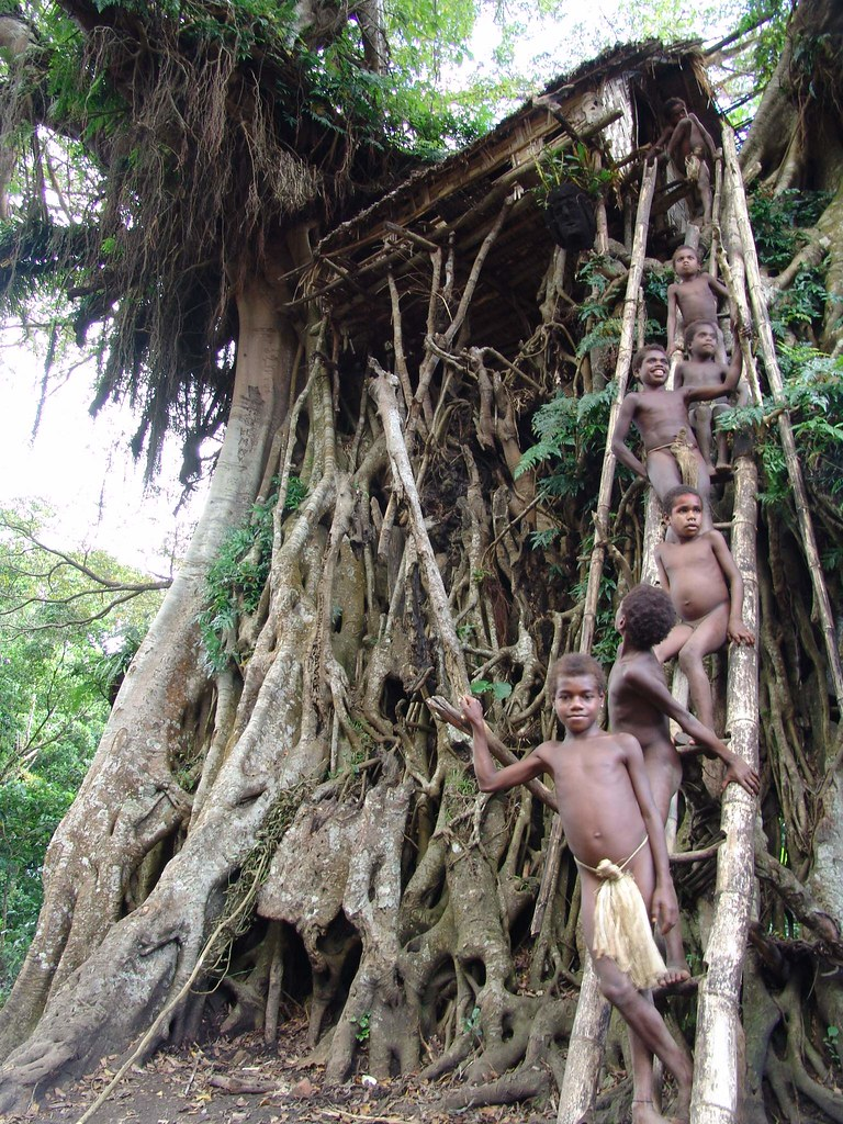 yakel tree house