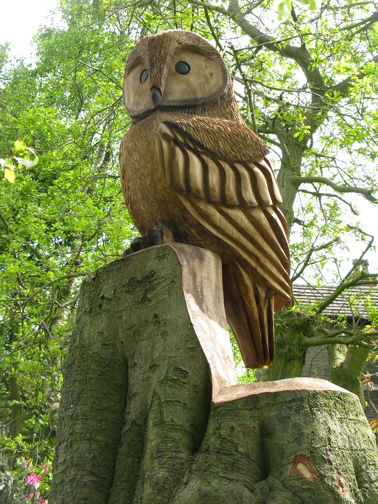 Owl carved out of a tree stump tony whittingham