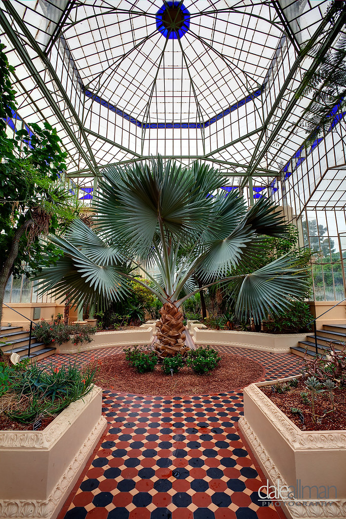 The palm house interior adelaide botanic gardens about for Adelaide gardens