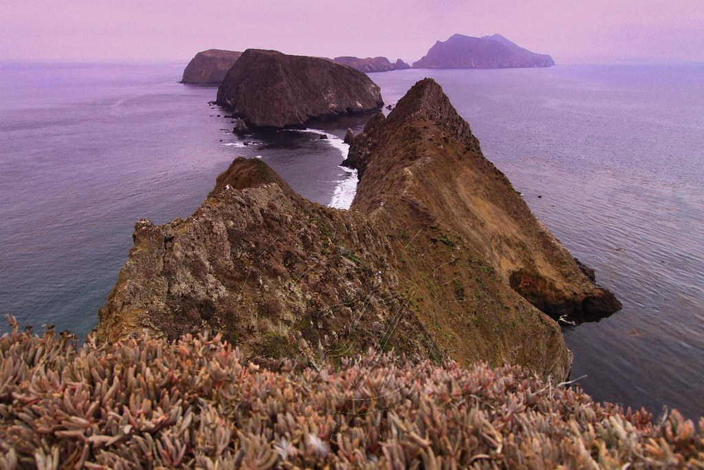 Channel Islands National Park Names