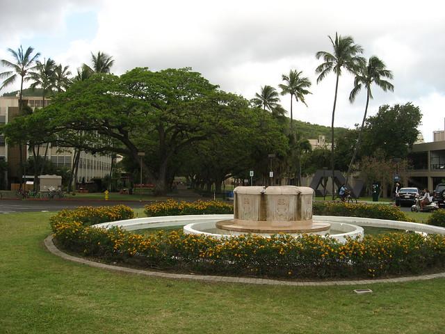 university of hawaii  manoa   oahu  hawaii  4