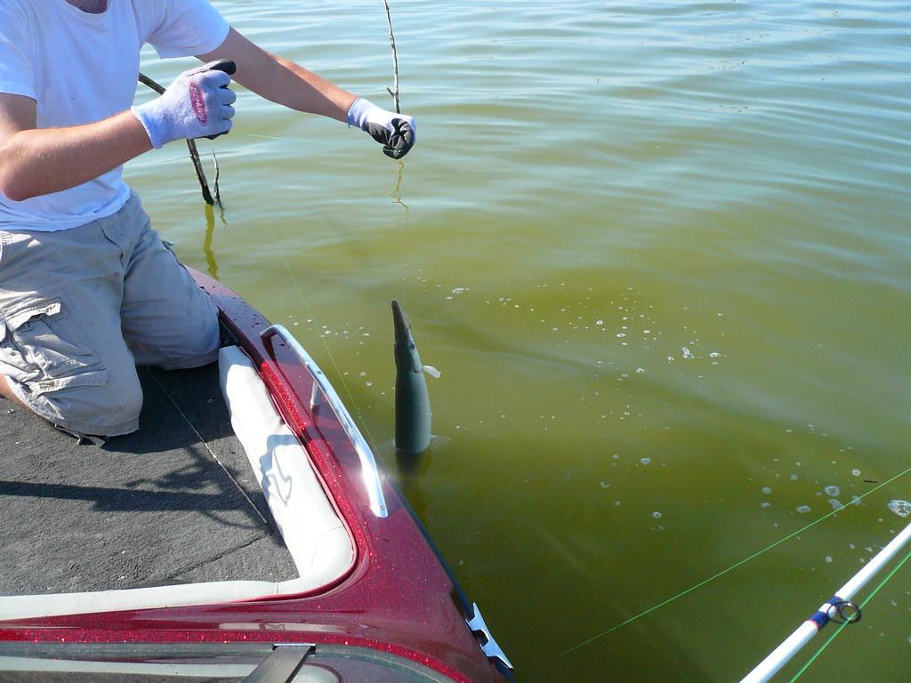P1140437 lake lavon fishing jhallmark flickr for Lake lavon fishing report