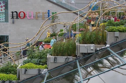 Québec-ville - Musée de la civilisation - Jardin sur les toits