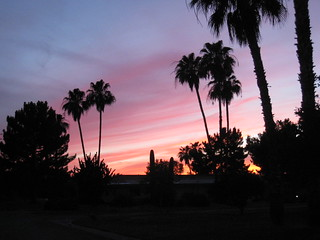 Scottsdale Sunset | by Dru Bloomfield - At Home in Scottsdale