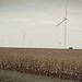 Fall wind turbine