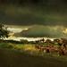 Vihar / Storm