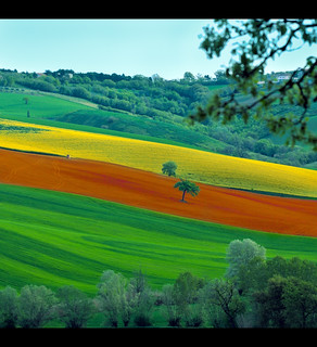 Landscape: Lines of Colors, green, orange and yellow. | by .Gianluca