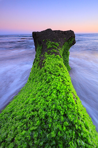 green rock | by tropicaLiving - Jessy Eykendorp