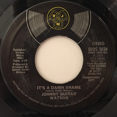 JOHNNY GUITAR WATSON:IT'S A DAMN SHAME(LABEL SIDE-A)