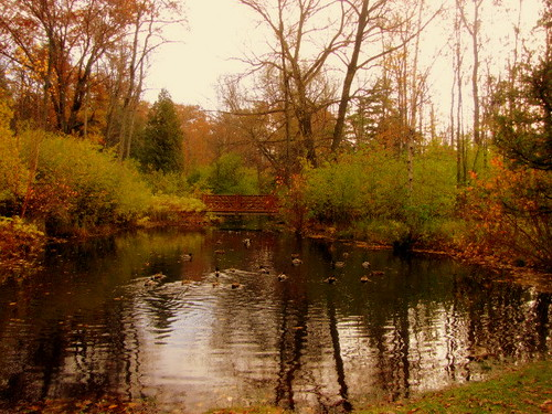 Reflections in Henes Park. Menominee Michigan | by **Ms Judi**♥