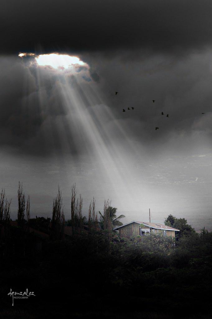 Luz en la oscuridad | La noche me trae manojos de letras
