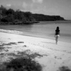 solo en una playa en Vieques