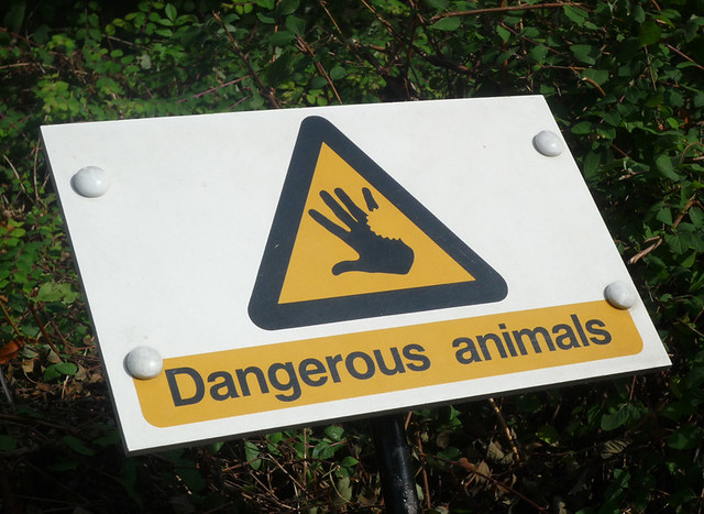 Dangerous Photos of Animal Dangerous Animals Sign