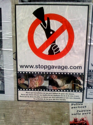 stop the gavage! | by David Lebovitz