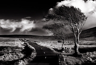 The Sally Gap, Co Wicklow, Ireland. | by 2c..