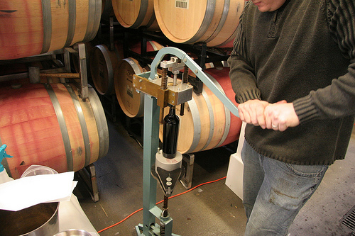 Bottling wine | by Contra Costa Times