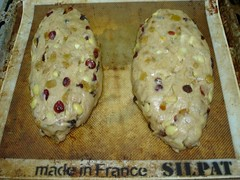 Shaped Stollen | by BaronessTapuzina