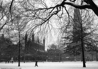 Yale University Old Campus / 1996 / SML | by See-ming Lee 李思明 SML