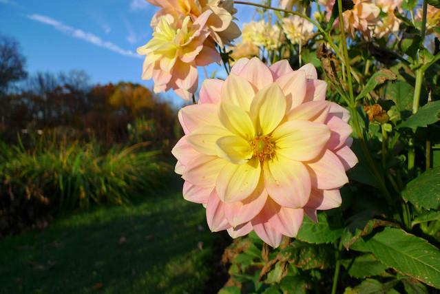 Steinhardt Gardens These Private Gardens In Hudson Valley Flickr