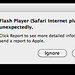 Flash Player quit unexpectedly