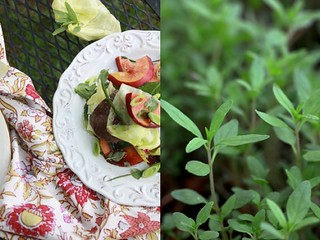 Herb and Salad | by Fresh Levant