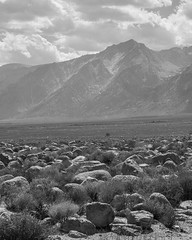 Mount Williamson, Sierra Nevada, from Manzanar