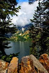 Grand Teton - Jenny Lake and Boulders | by Bill Wight CA