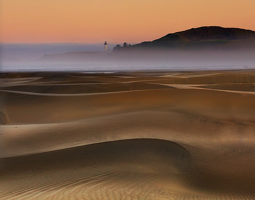 Agate Beach Sand Dunes-Oregon Coast | by kevin mcneal