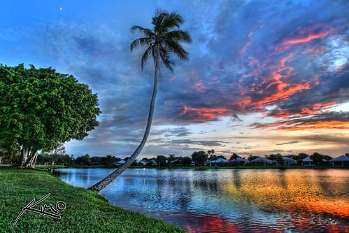 Palm Beach Gardens Real Estate Quads For Sale