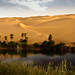 Umm - al - Maa Oasis بحيرة ام الماء اوبارى