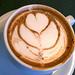 Hot Cocoa 7-1-09 IMG_7682