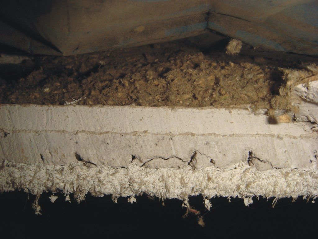 Cross Section Asbestos Sprayed On Acoustical Ceiling Syste