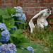 Fear & wisteria