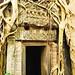 Ta Phrom temple aka Tomb Raider