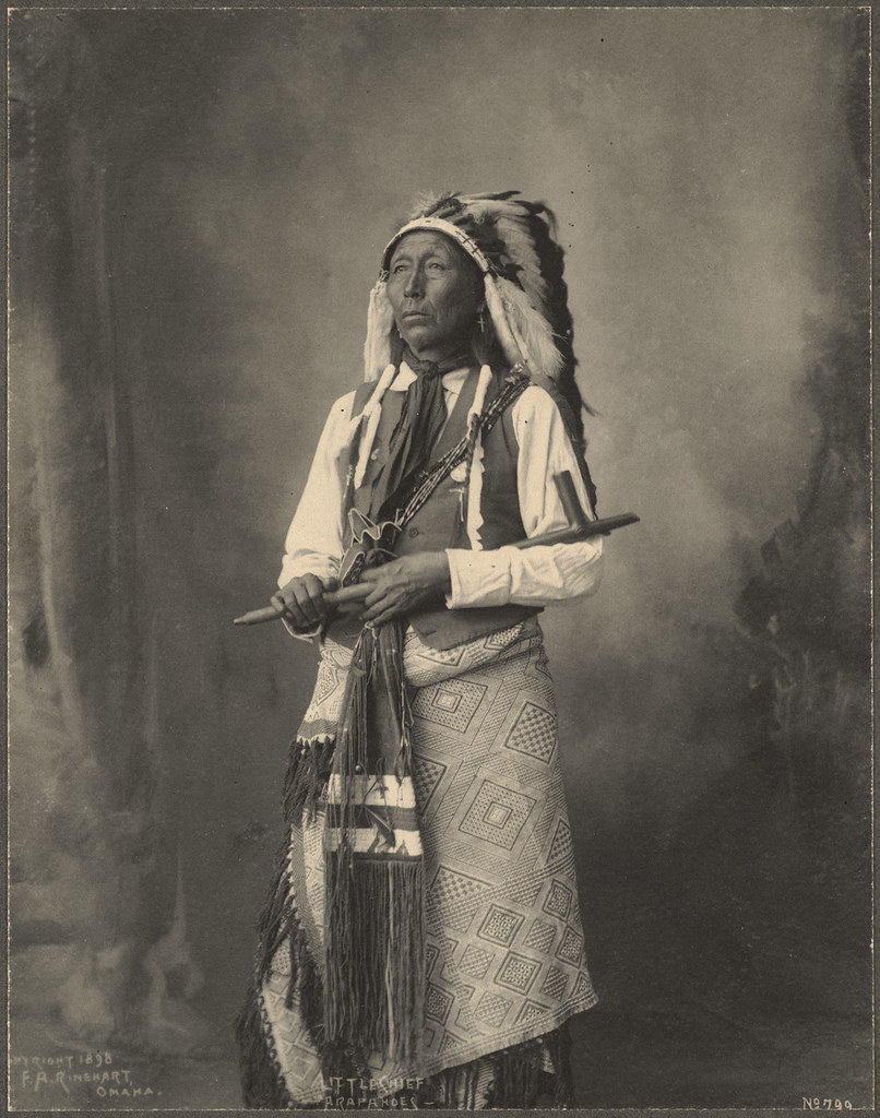 the different stereotypes of native americans during the nineteenth century Native american - native american history: the thoughts and perspectives of indigenous individuals, especially those who lived during the 15th through 19th centuries, have survived in written form less often than is optimal for the historian.