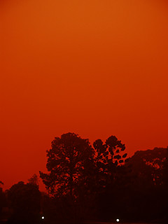 230909 Red Storm Rising Sydney Dust Storm | by Nico Nelson