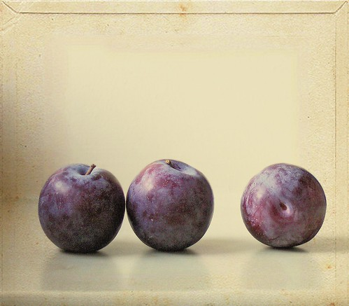Just Plums | by vesna1962