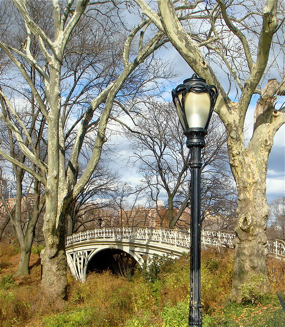 Lamp Post and Foot Bridge in Central Park | It was a beautif… | Flickr