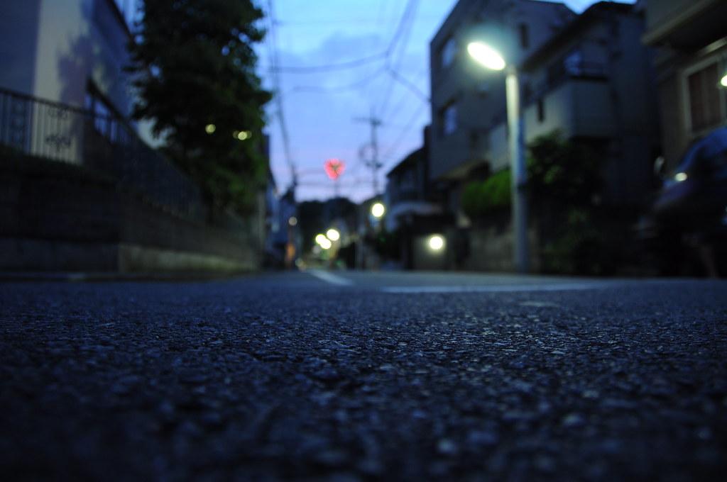 Nikon D90 Sample Photo for Review | AkihabaraNews | Flickr