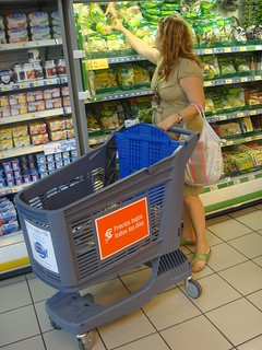 Woman Shopping with Plastic Shopping Cart | by Polycart