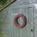 Shed with rosehips