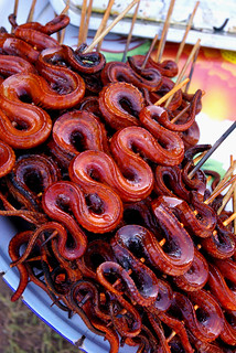 Grilled Snake. Bonn Om Toeuk. The Cambodian Water Festival In Phnom Penh | by The Hungry Cyclist