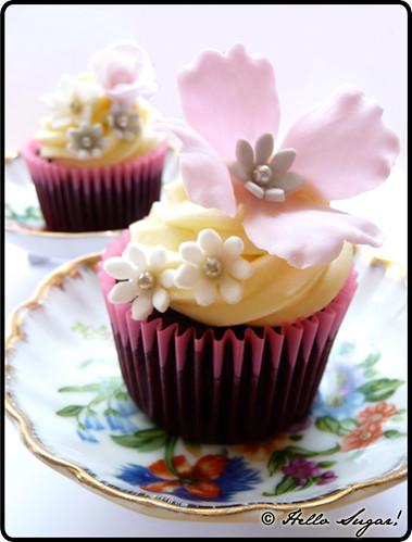 Dark Chocolate Truffle Cupcakes w White Chocolate Cream Cheese ...