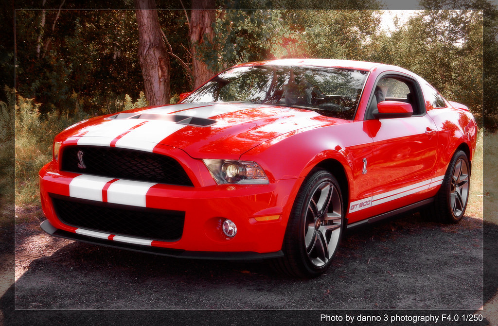 2010 Shelby Cobra Gt500 Red Snake Ford S Special