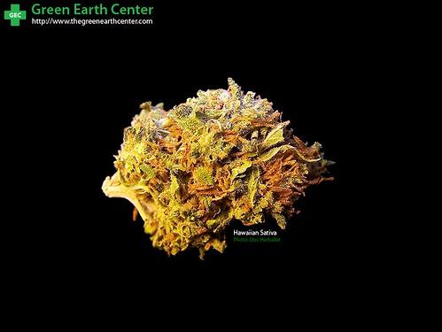 Medical Marijuana Long Beach Ca