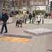 Amazing 3D Sidewalk Chalk Art 40