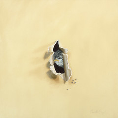 """Tiny Trespasser"" Baby WrenTrompe-l'oeil Bird Oil Painting by Camille Engel 