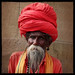 Lal Baba, the Ultimate Sādhu