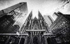 St. Patrick's Cathedral | by Philipp Klinger Photography