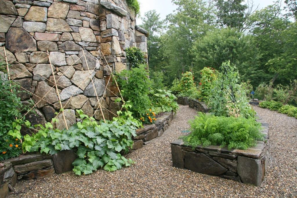 3779906166 on Raised Vegetable Garden Design